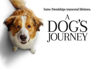 Morning Movie - A Dog's Journey @ Washington District Library - Sunnyland Branch