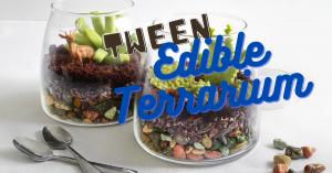 Tween Edible Terrarium Kit Pick-Up @ Washington District Library- Sunnyland Branch