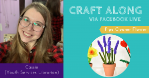 Craft Along - Pipe Cleaner Flower @ Facebook Live
