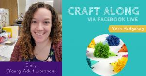Craft Along - Yarn Hedgehog @ Facebook Premiere