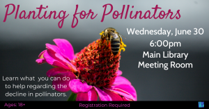 Planting for Pollinators @ Washington District Library- Main Library